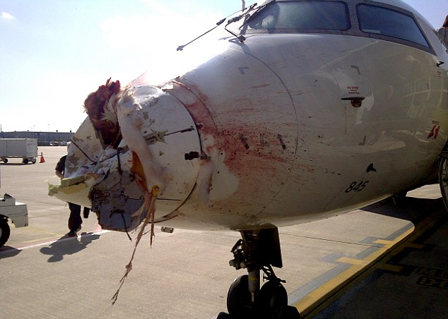 ASA 5087 CRJ Bird Strike Damage