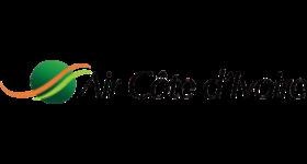 Air_Côte_d'Ivoire_logo
